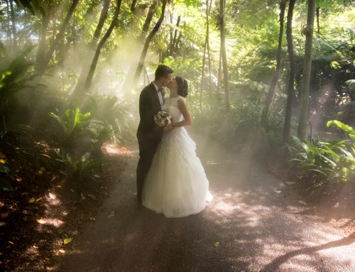 Logan Wedding Photography