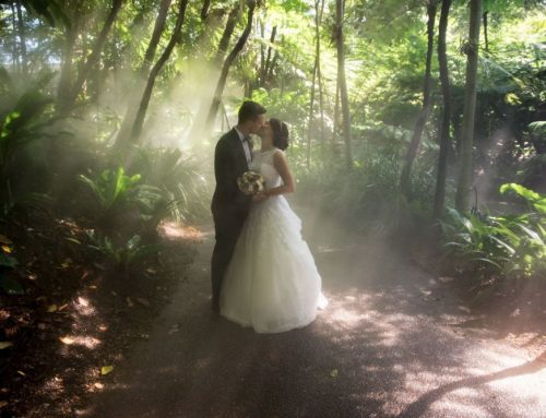 Rockhampton and Gladstone Wedding Photographers